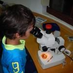 rechearcher-night-aquarium-rhodes